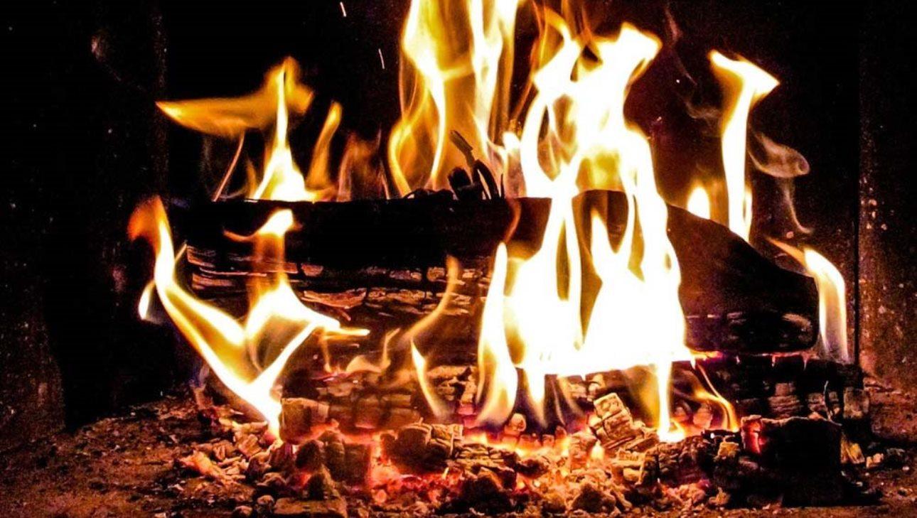 Quel bois choisir pour un bon feu ?
